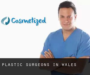 Plastic Surgeons in Wales