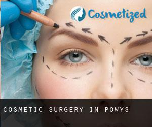 Cosmetic Surgery in Powys